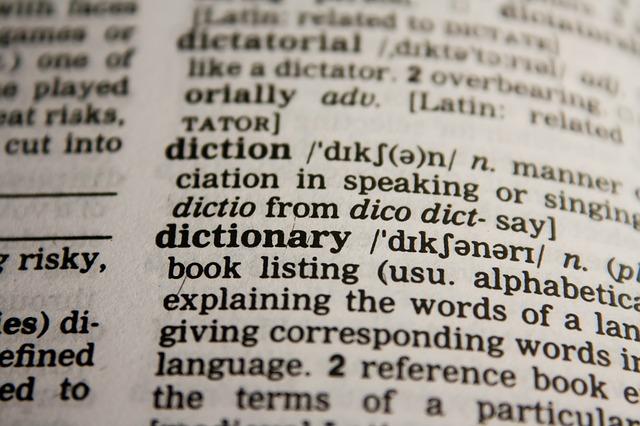 stránka slovníku